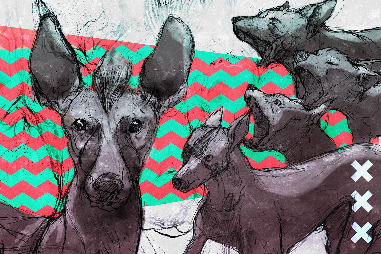 Ilustración: Carlos Lerma