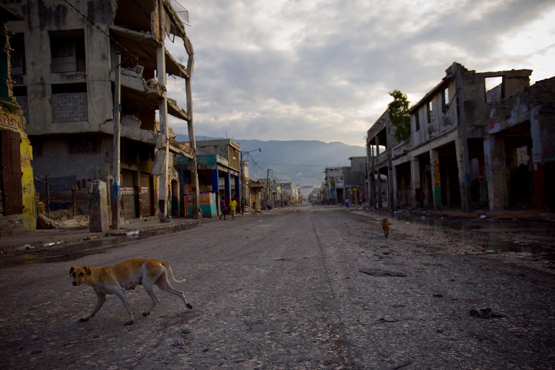 Un perro deambula en una calle vacía en Puerto Príncipe. Foto: Alejandro Saldívar