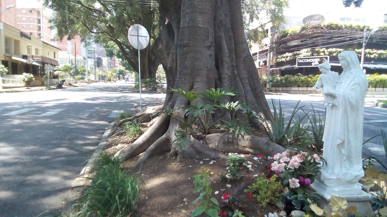 Av. Nutibara, a la altura del barrio Laureles, zona residencial y de restaurantes.