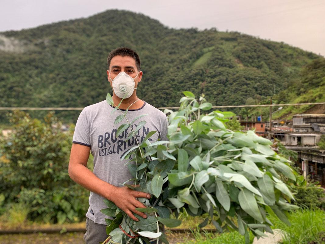 Juan Carlos Barrionuevo, residente de la parroquia Río Verde, lleva eucalipto a su familia para realizar vaporizaciones. Foto: Dominique Riofrio