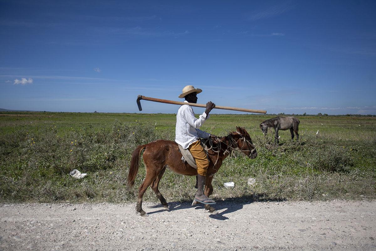 Un campesino en Gonaïves, Haití. Foto: Alejandro Saldívar