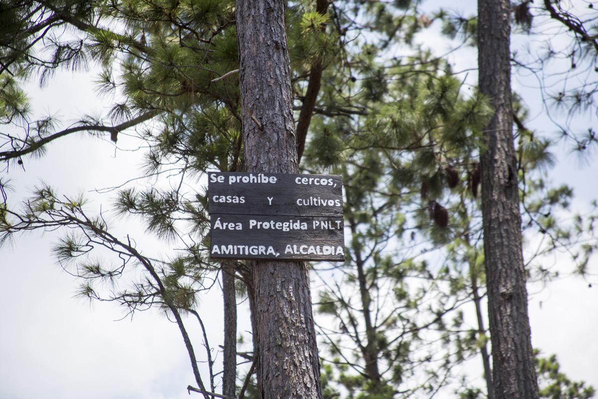 Un cartel de Amitigra y la Alcaldía del Distrito Central advierte sobre la prohibición para montar cercos, casas y cultivos en la zona núcleo del Parque Nacional La Tigra.  Tegucigalpa, 24 de abril de 2021. Foto: Ezequiel Sánchez